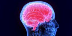 Estudo aponta risco maior de trombose cerebral em quem teve covid-19